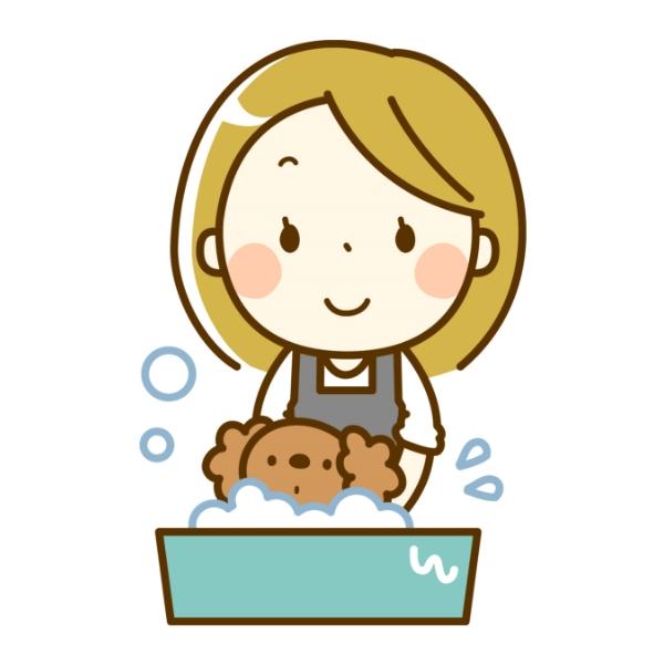 トリマーがわんちゃんを洗っている画像